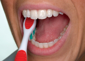 4) Brush the chewing surfaces.